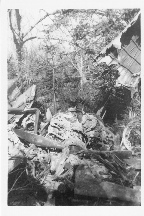 Pidgeon, Arlen & Donna, 1957 L-20 crash 1 of 5 (2)